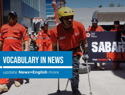 Vocabulary In News: Disabled climber to hoist national flag on Mount Elbrus